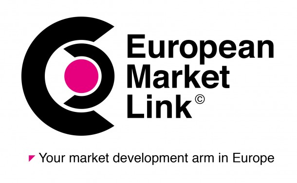 European Market Link market development training and consulting for US companies in Europe